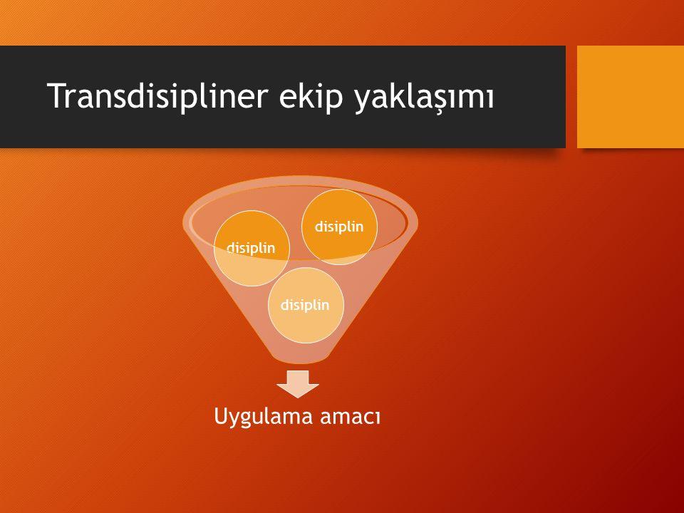 Transdisipliner ekip yaklaşımı Uygulama amacı disiplin