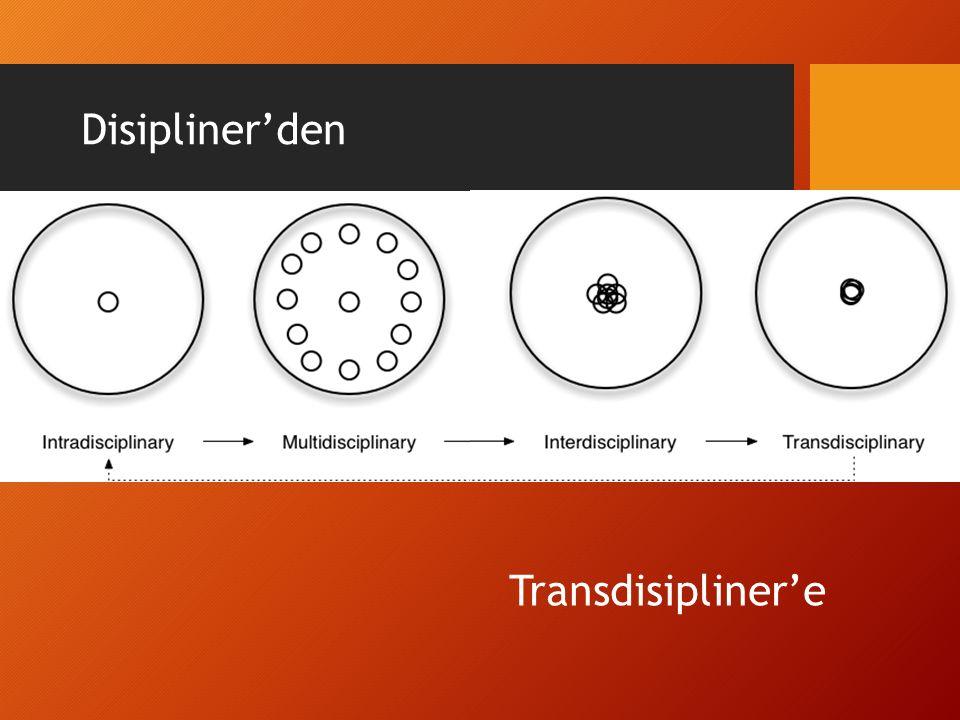 Disipliner'den Transdisipliner'e
