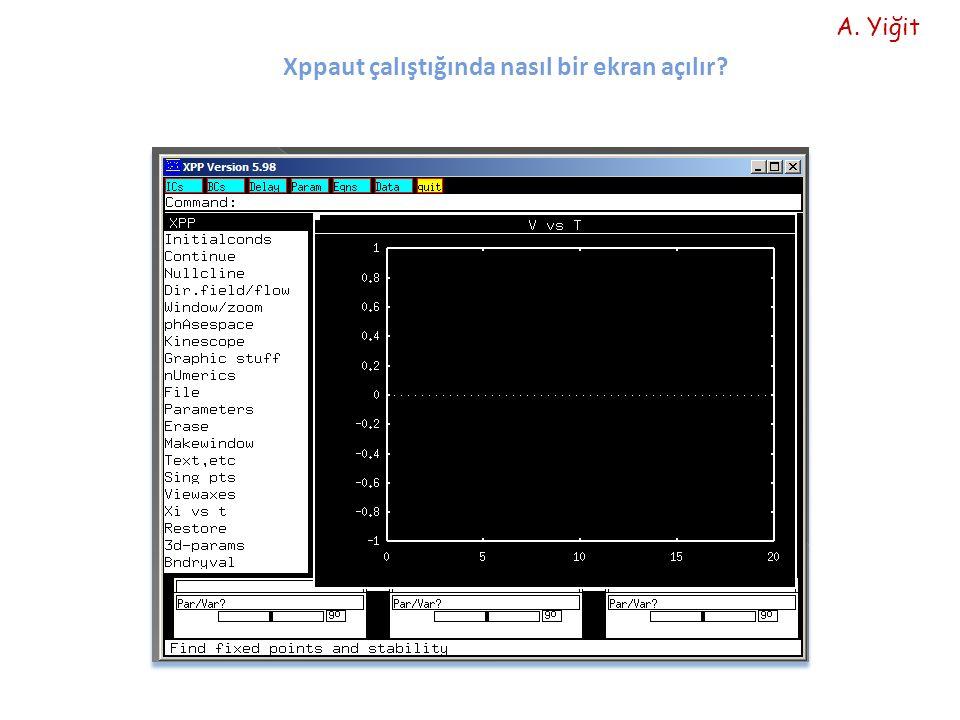 Xppaut çalıştığında nasıl bir ekran açılır? A. Yiğit