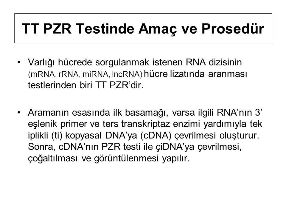 TT PZR Testinde Amaç ve Prosedür Varlığı hücrede sorgulanmak istenen RNA dizisinin (mRNA, rRNA, miRNA, lncRNA) hücre lizatında aranması testlerinden biri TT PZR'dir.