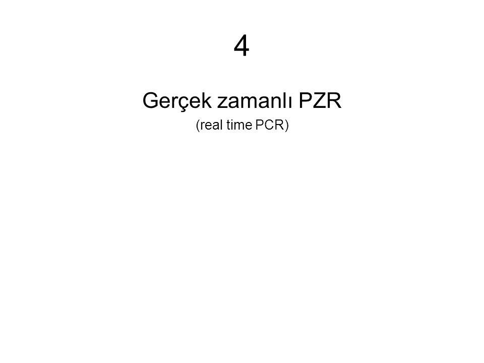 4 Gerçek zamanlı PZR (real time PCR)