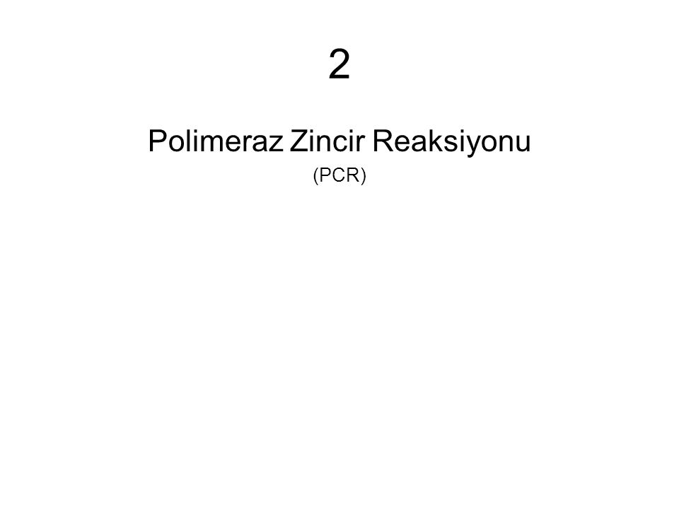 2 Polimeraz Zincir Reaksiyonu (PCR)