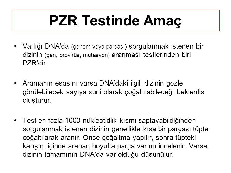 PZR Testinde Amaç Varlığı DNA'da (genom veya parçası) sorgulanmak istenen bir dizinin (gen, provirüs, mutasyon) aranması testlerinden biri PZR'dir.