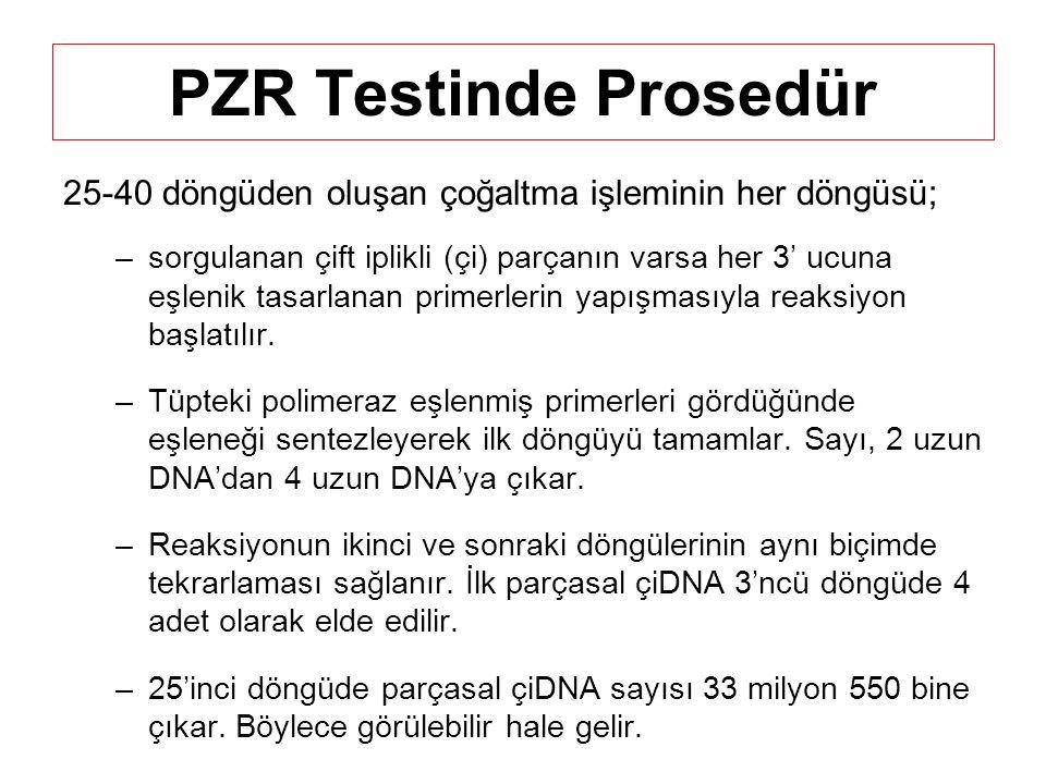 PZR Testinde Prosedür 25-40 döngüden oluşan çoğaltma işleminin her döngüsü; –sorgulanan çift iplikli (çi) parçanın varsa her 3' ucuna eşlenik tasarlanan primerlerin yapışmasıyla reaksiyon başlatılır.