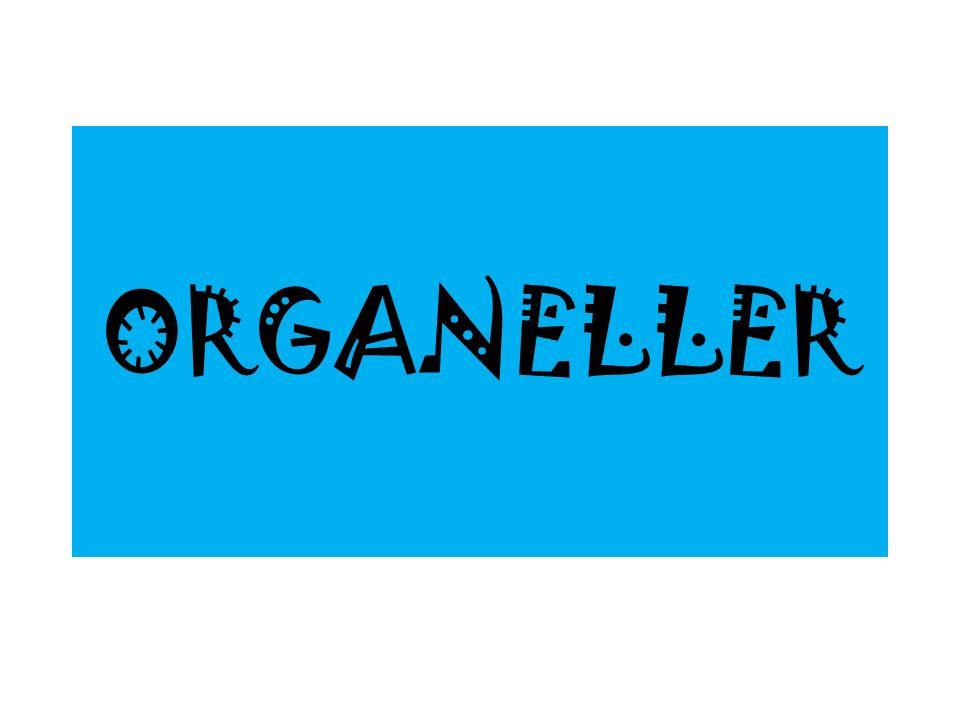 ORGANELLER