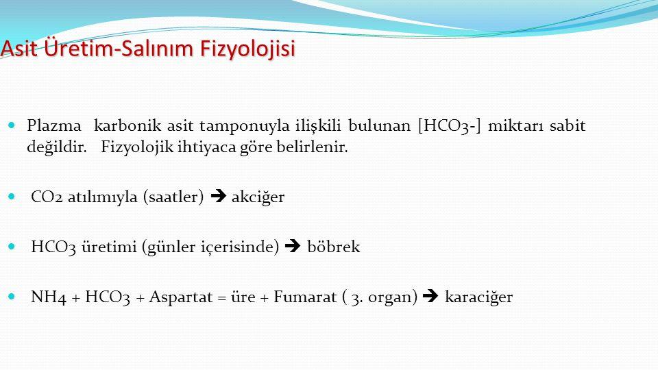 Asit Üretim-Salınım Fizyolojisi Plazma karbonik asit tamponuyla ilişkili bulunan [HCO3-] miktarı sabit değildir.