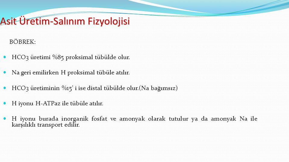 Asit Üretim-Salınım Fizyolojisi BÖBREK: HCO3 üretimi %85 proksimal tübülde olur.