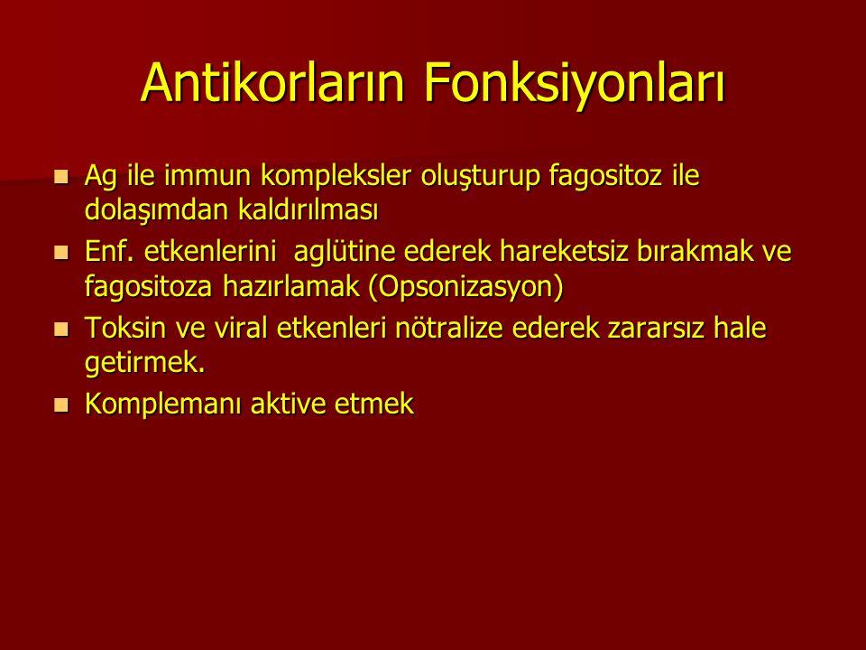Antikorların Fonksiyonları Ag ile immun kompleksler oluşturup fagositoz ile dolaşımdan kaldırılması Ag ile immun kompleksler oluşturup fagositoz ile d