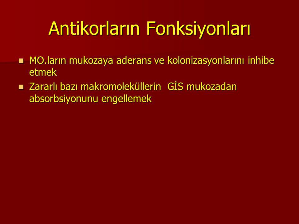 Antikorların Fonksiyonları MO.ların mukozaya aderans ve kolonizasyonlarını inhibe etmek MO.ların mukozaya aderans ve kolonizasyonlarını inhibe etmek Z