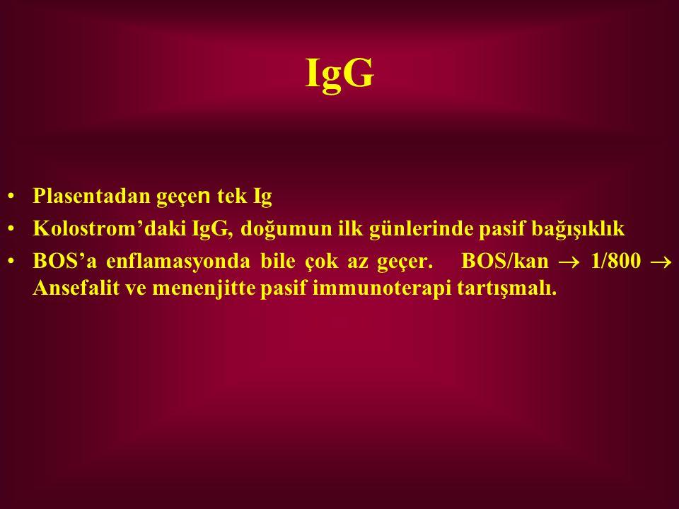 IgG Plasentadan geçe n tek Ig Kolostrom'daki IgG, doğumun ilk günlerinde pasif bağışıklık BOS'a enflamasyonda bile çok az geçer. BOS/kan  1/800  Ans