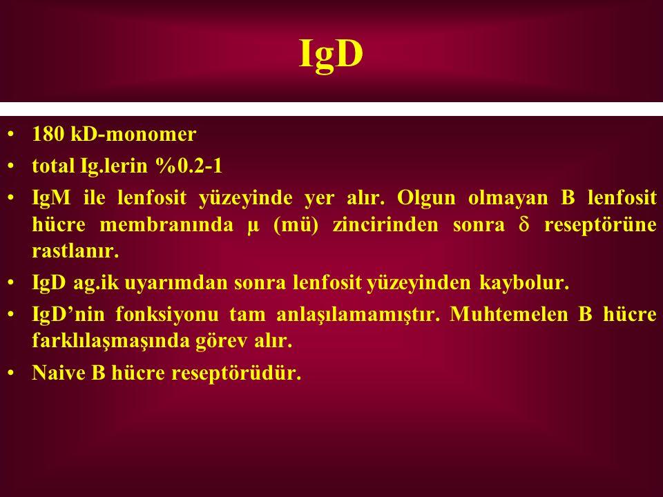 IgD 180 kD-monomer total Ig.lerin %0.2-1 IgM ile lenfosit yüzeyinde yer alır. Olgun olmayan B lenfosit hücre membranında µ (mü) zincirinden sonra  re
