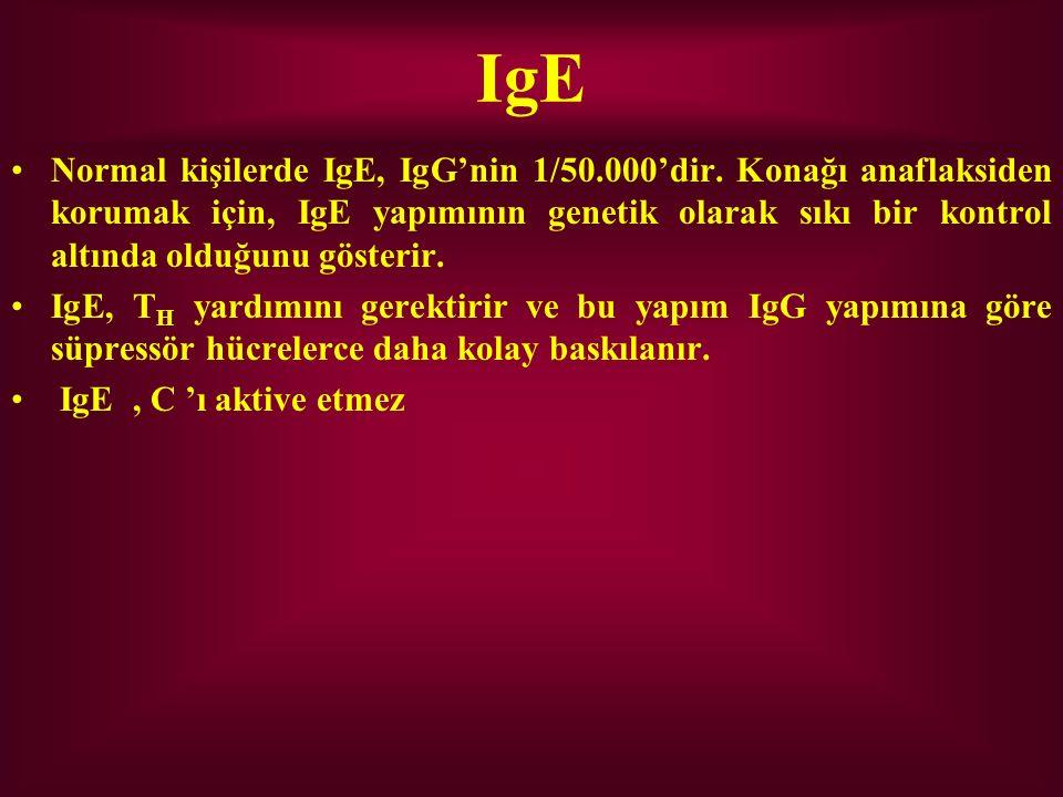 IgE Normal kişilerde IgE, IgG'nin 1/50.000'dir. Konağı anaflaksiden korumak için, IgE yapımının genetik olarak sıkı bir kontrol altında olduğunu göste