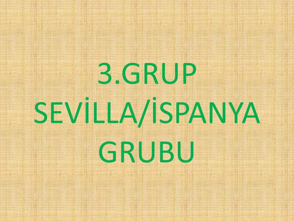 3.GRUP SEVİLLA/İSPANYA GRUBU