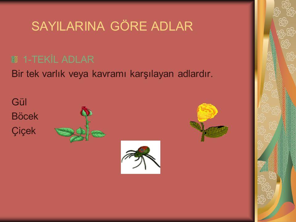 SAYILARINA GÖRE ADLAR 1-TEKİL ADLAR Bir tek varlık veya kavramı karşılayan adlardır. Gül Böcek Çiçek