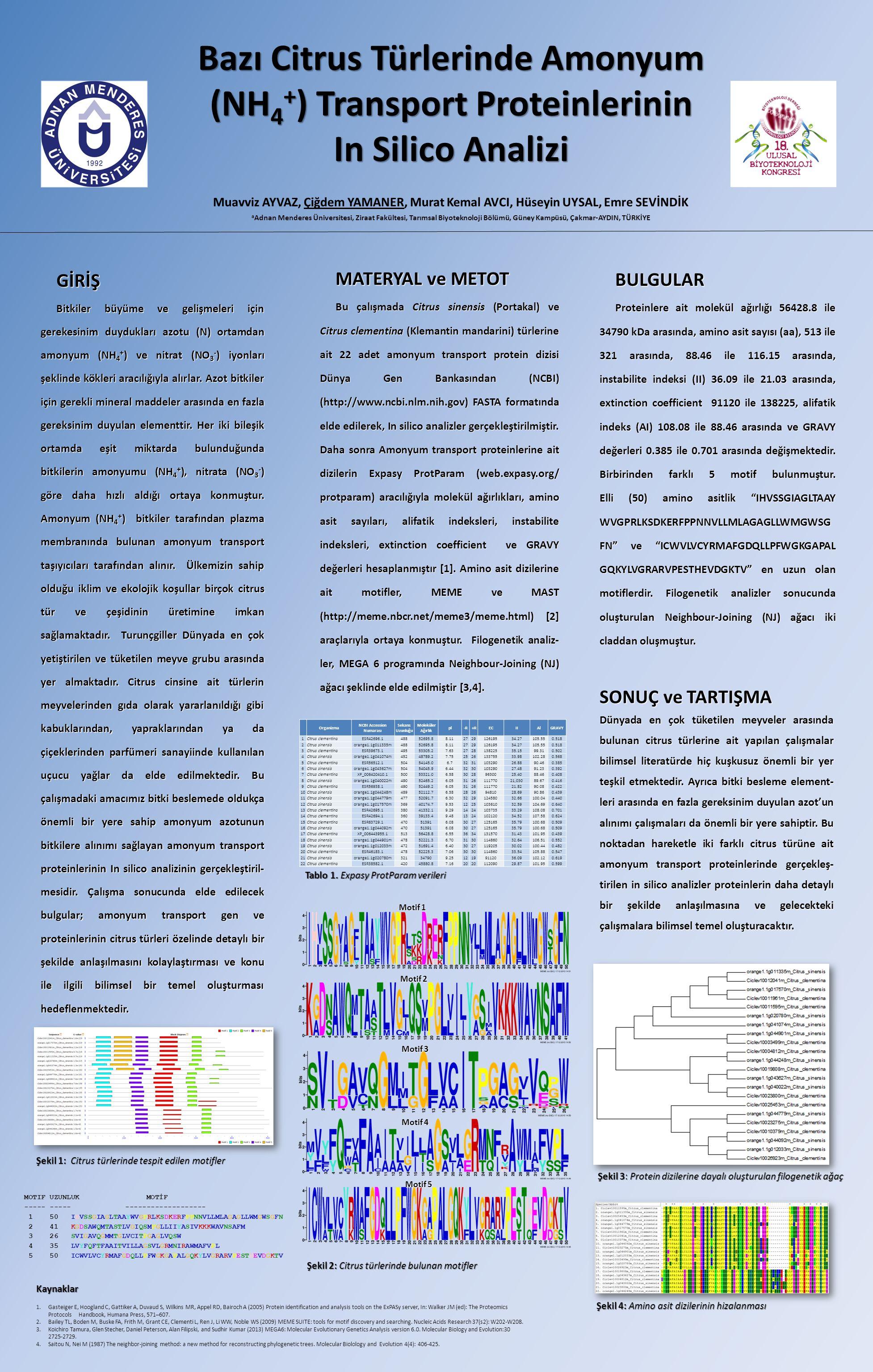 Bazı Citrus Türlerinde Amonyum (NH 4 + ) Transport Proteinlerinin In Silico Analizi Muavviz AYVAZ, Çiğdem YAMANER, Murat Kemal AVCI, Hüseyin UYSAL, Emre SEVİNDİK a Adnan Menderes Üniversitesi, Ziraat Fakültesi, Tarımsal Biyoteknoloji Bölümü, Güney Kampüsü, Çakmar-AYDIN, TÜRKİYE GİRİŞ Bitkiler büyüme ve gelişmeleri için gerekesinim duydukları azotu (N) ortamdan amonyum (NH 4 + ) ve nitrat (NO 3 - ) iyonları şeklinde kökleri aracılığıyla alırlar.