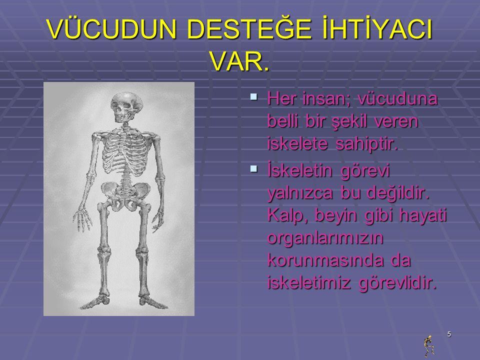 6 İSKELETİMİZ  İskeletimizi oluşturan parçalardan biri kemiklerdir.