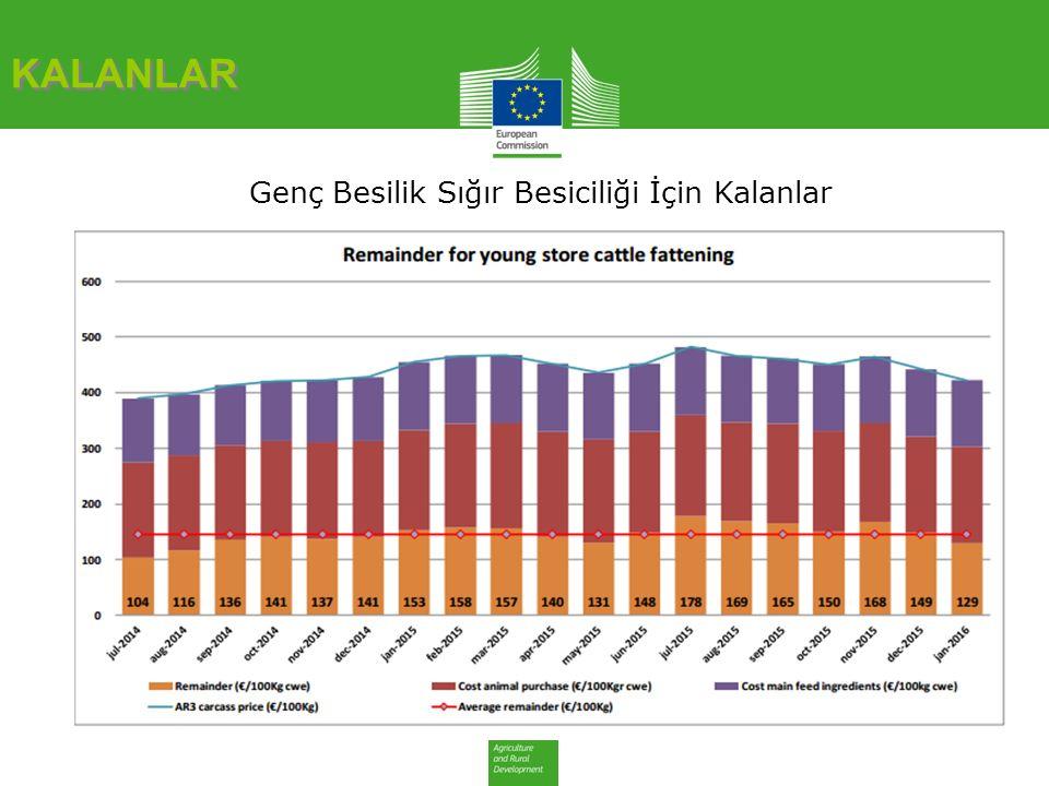 KALANLAR Genç Besilik Sığır Besiciliği İçin Kalanlar: Karkas Fiyat %'si