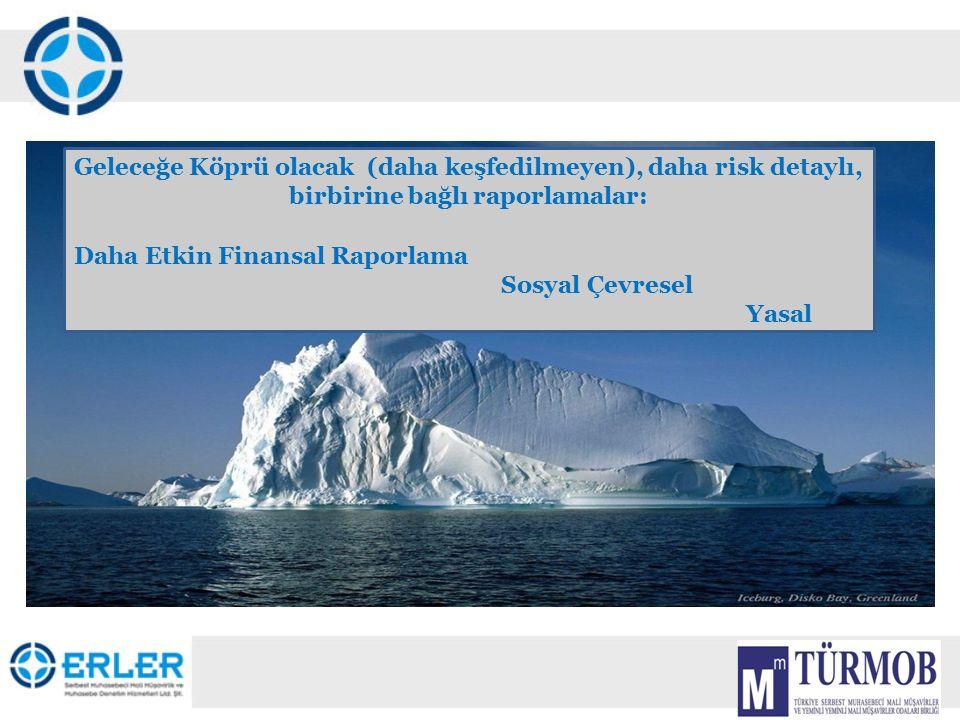 8 Geleceğe Köprü olacak (daha keşfedilmeyen), daha risk detaylı, birbirine bağlı raporlamalar: Daha Etkin Finansal Raporlama Sosyal Çevresel Yasal