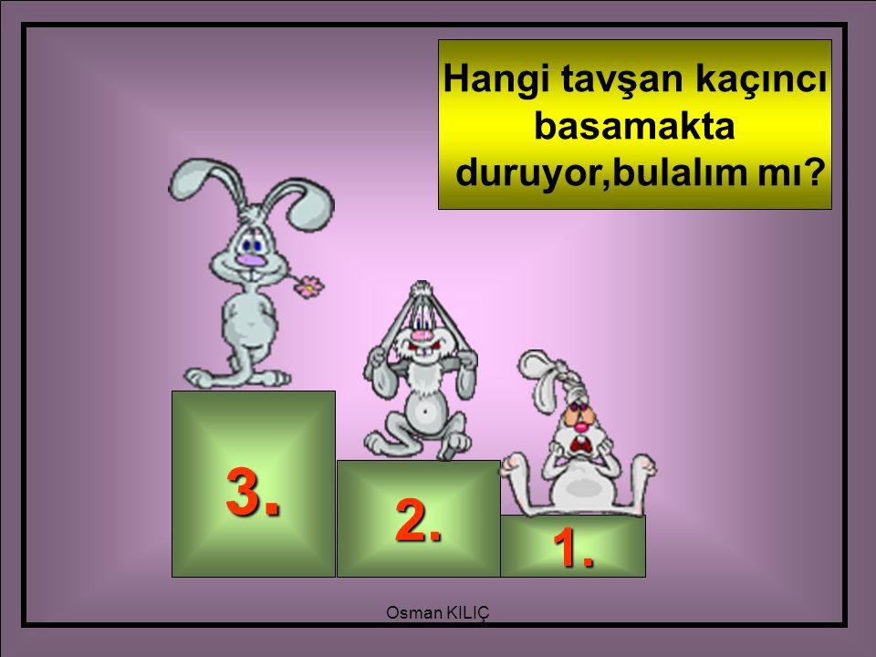 3.3.3.3. 2. 1. Hangi tavşan kaçıncı basamakta duruyor,bulalım mı? Osman KILIÇ