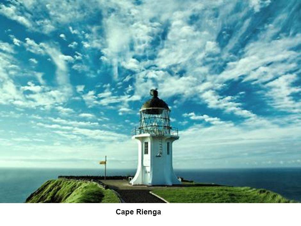 Cape Rienga