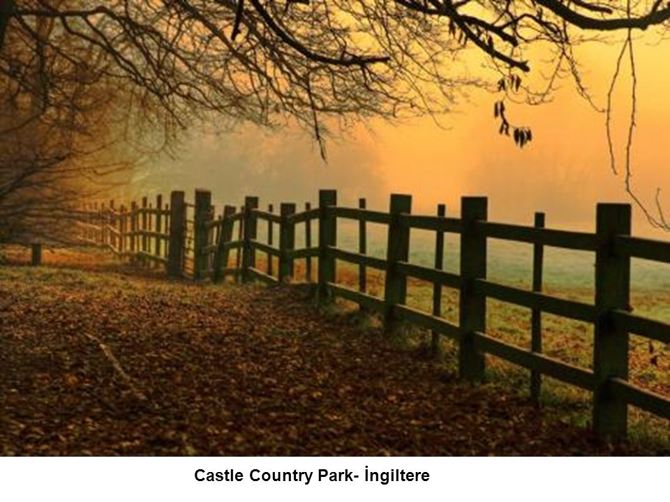 Castle Country Park- İngiltere