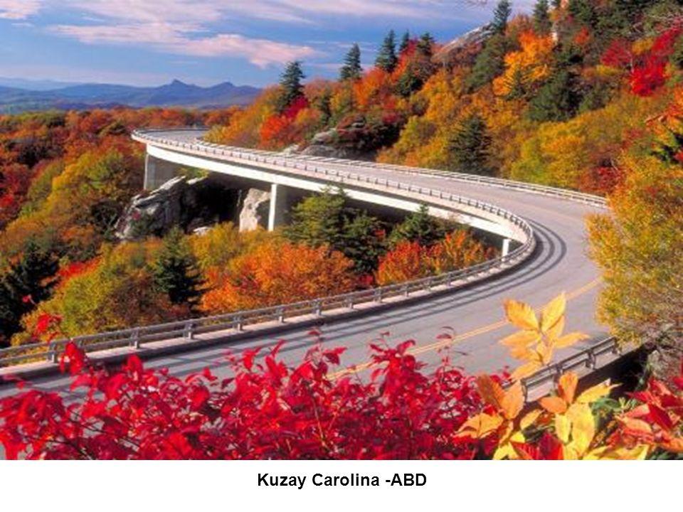 Kuzay Carolina -ABD