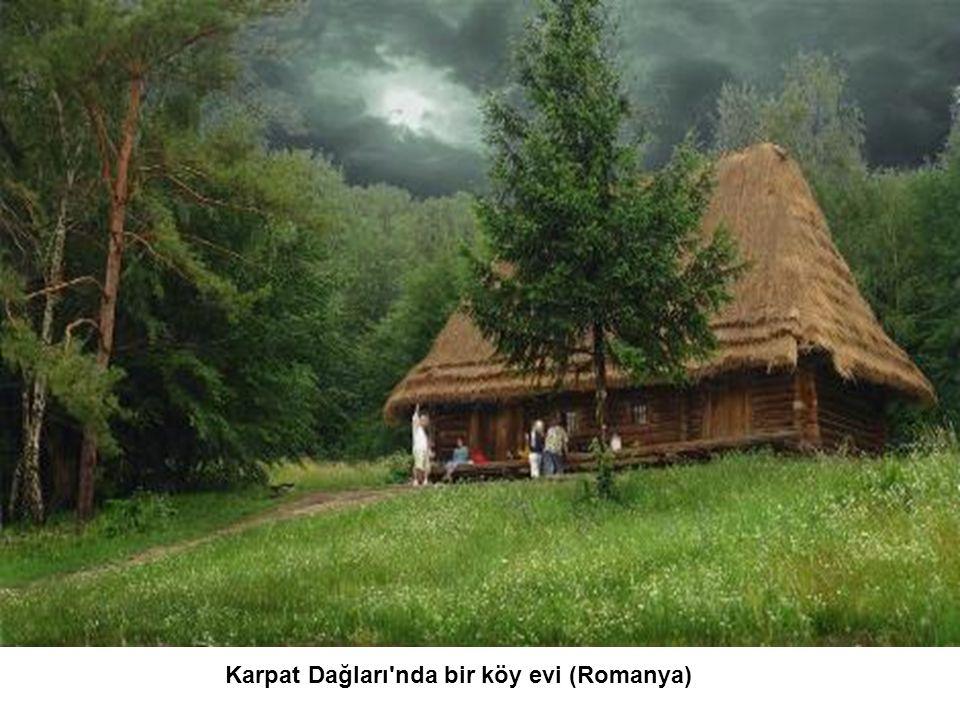 Karpat Dağları nda bir köy evi (Romanya)