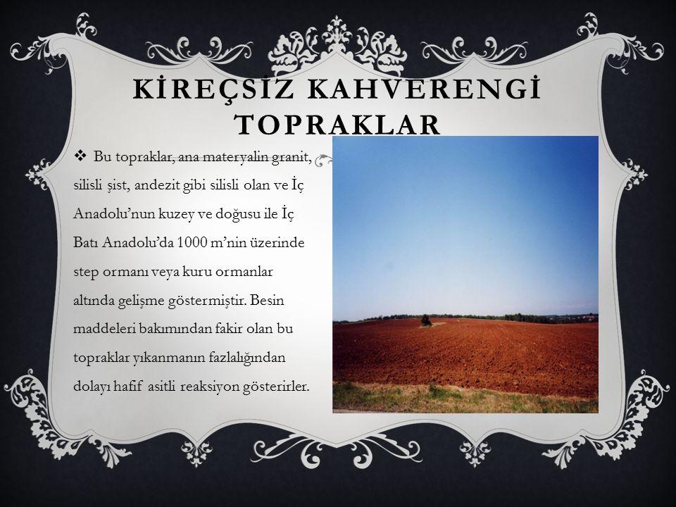 KİREÇSİZ KAHVERENGİ TOPRAKLAR  Bu topraklar, ana materyalin granit, silisli şist, andezit gibi silisli olan ve İç Anadolu'nun kuzey ve doğusu ile İç