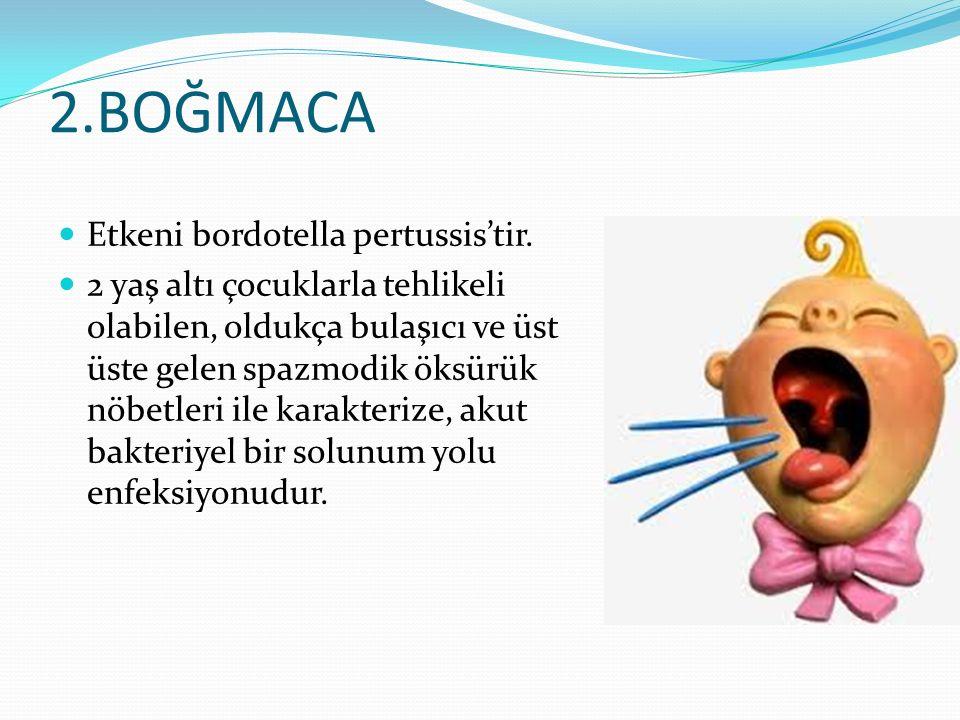 2.BOĞMACA Etkeni bordotella pertussis'tir. 2 yaş altı çocuklarla tehlikeli olabilen, oldukça bulaşıcı ve üst üste gelen spazmodik öksürük nöbetleri il