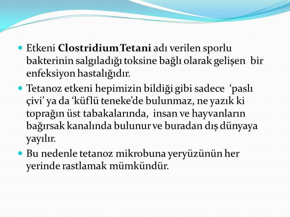 Etkeni Clostridium Tetani adı verilen sporlu bakterinin salgıladığı toksine bağlı olarak gelişen bir enfeksiyon hastalığıdır. Tetanoz etkeni hepimizin