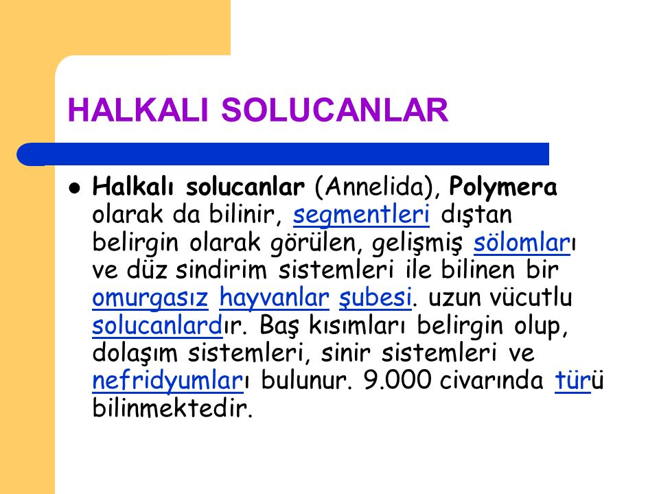 HALKALI SOLUCANLAR Halkalı solucanlar (Annelida), Polymera olarak da bilinir, segmentleri dıştan belirgin olarak görülen, gelişmiş sölomları ve düz si