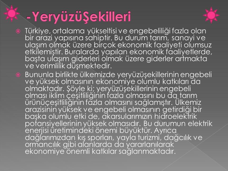  Türkiye, ortalama yükseltisi ve engebeliliği fazla olan bir arazi yapısına sahiptir. Bu durum tarım, sanayi ve ulaşım olmak üzere birçok ekonomik fa