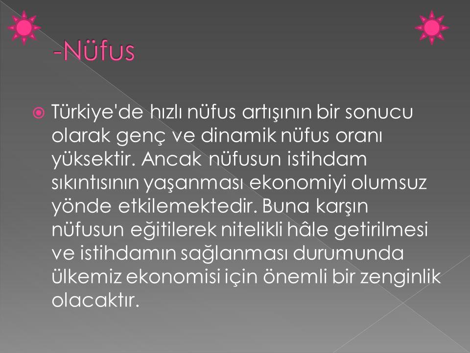  Türkiye'de hızlı nüfus artışının bir sonucu olarak genç ve dinamik nüfus oranı yüksektir. Ancak nüfusun istihdam sıkıntısının yaşanması ekonomiyi ol