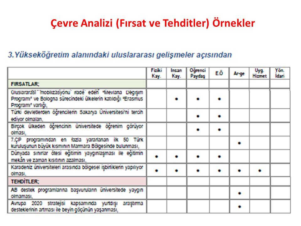 Çevre Analizi (Fırsat ve Tehditler) Örnekler