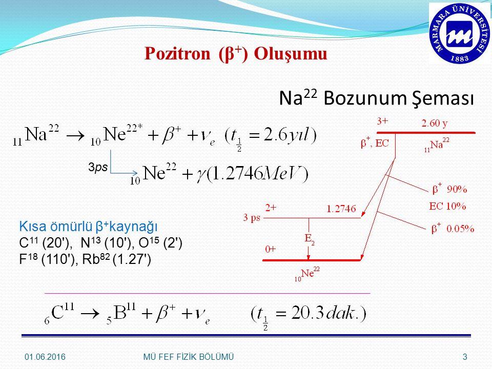 Na 22 Bozunum Şeması 01.06.2016MÜ FEF FİZİK BÖLÜMÜ3 Pozitron (β + ) Oluşumu Kısa ömürlü β + kaynağı C 11 (20 ), N 13 (10 ), O 15 (2 ) F 18 (110 ), Rb 82 (1.27 ) 3ps