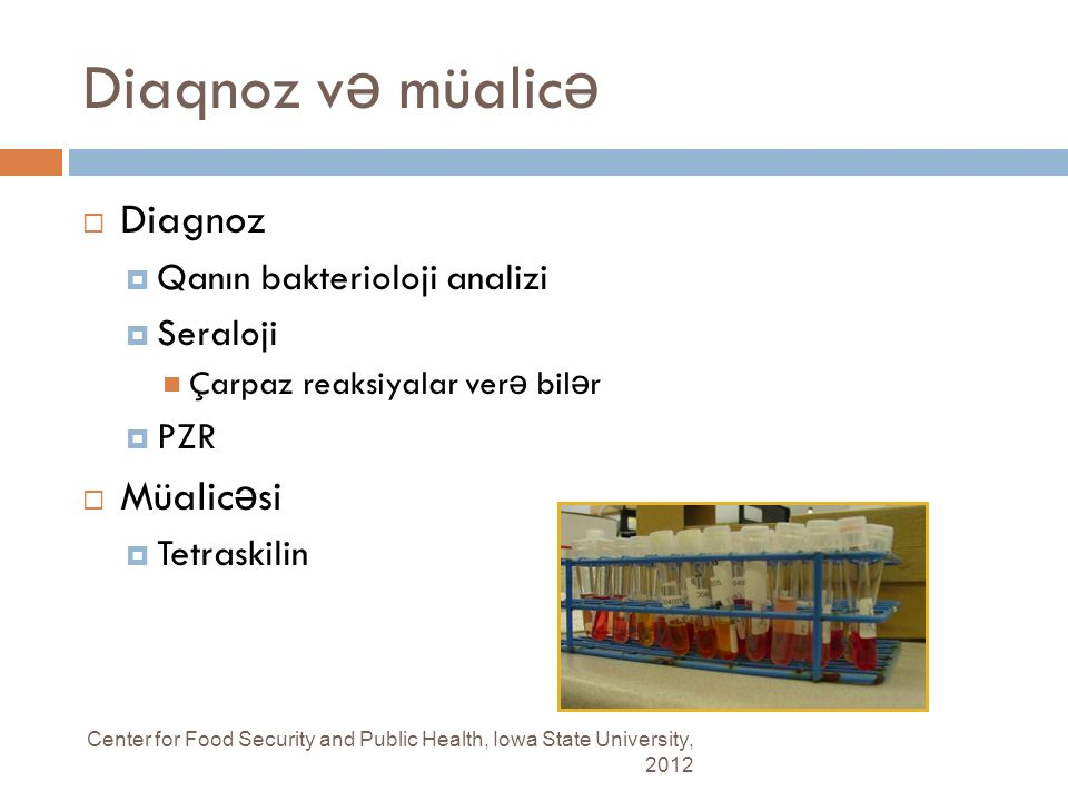 Diaqnoz v ə müalic ə Center for Food Security and Public Health, Iowa State University, 2012  Diagnoz  Qanın bakterioloji analizi  Seraloji Çarpaz reaksiyalar ver ə bil ə r  PZR  Müalic ə si  Tetraskilin