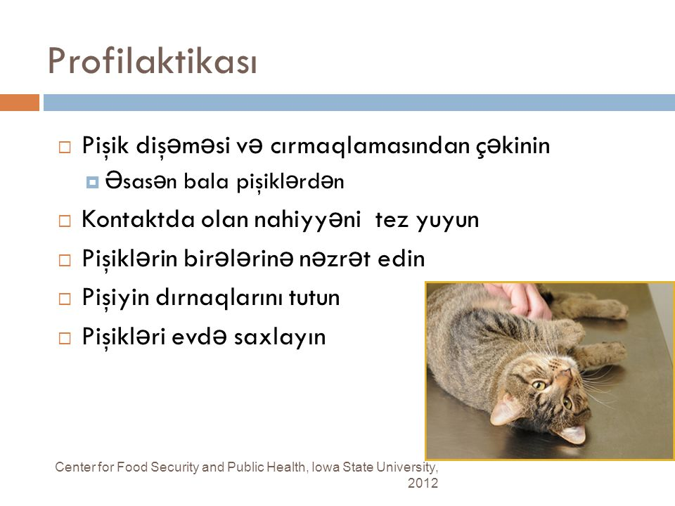 Profilaktikası Center for Food Security and Public Health, Iowa State University, 2012  Pişik diş ə m ə si v ə cırmaqlamasından ç ə kinin  Ə sas ə n