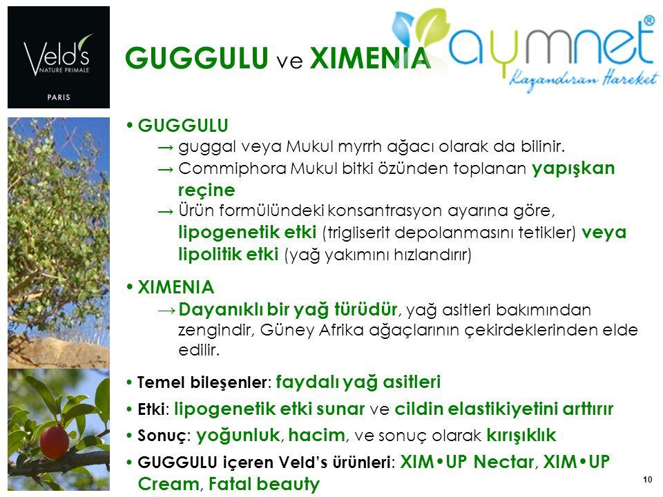 10 GUGGULU ve XIMENIA GUGGULU → guggal veya Mukul myrrh ağacı olarak da bilinir. → Commiphora Mukul bitki özünden toplanan yapışkan reçine → Ürün form