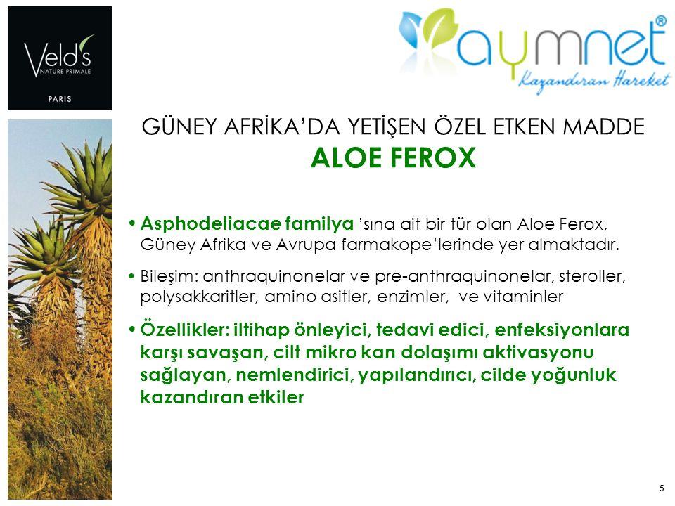 5 GÜNEY AFRİKA'DA YETİŞEN ÖZEL ETKEN MADDE ALOE FEROX Asphodeliacae familya 'sına ait bir tür olan Aloe Ferox, Güney Afrika ve Avrupa farmakope'lerind