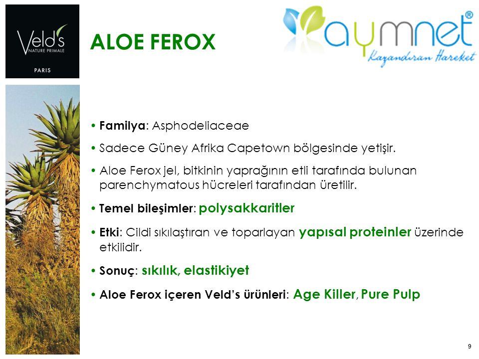 9 ALOE FEROX Familya : Asphodeliaceae Sadece Güney Afrika Capetown bölgesinde yetişir. Aloe Ferox jel, bitkinin yaprağının etli tarafında bulunan pare