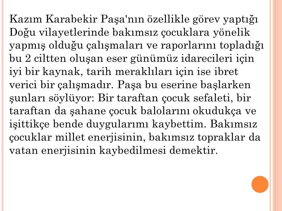 Kazım Karabekir Paşa nın özellikle görev yaptığı Doğu vilayetlerinde bakımsız çocuklara yönelik yapmış olduğu çalışmaları ve raporlarını topladığı bu 2 ciltten oluşan eser günümüz idarecileri için iyi bir kaynak, tarih meraklıları için ise ibret verici bir çalışmadır.