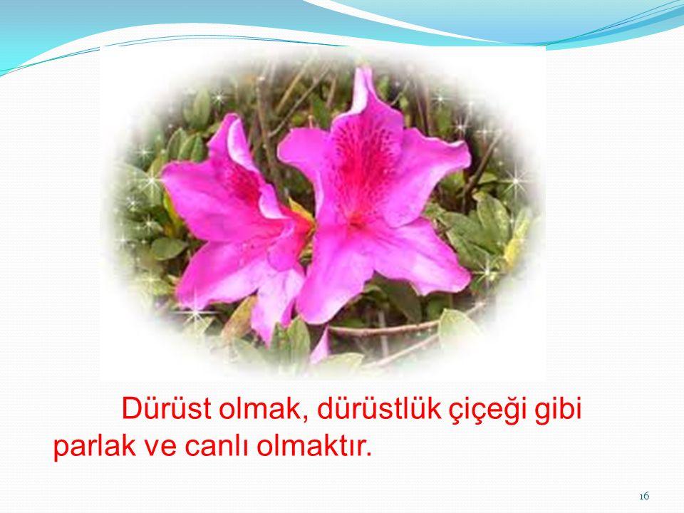 Dürüst olmak, dürüstlük çiçeği gibi parlak ve canlı olmaktır. 16