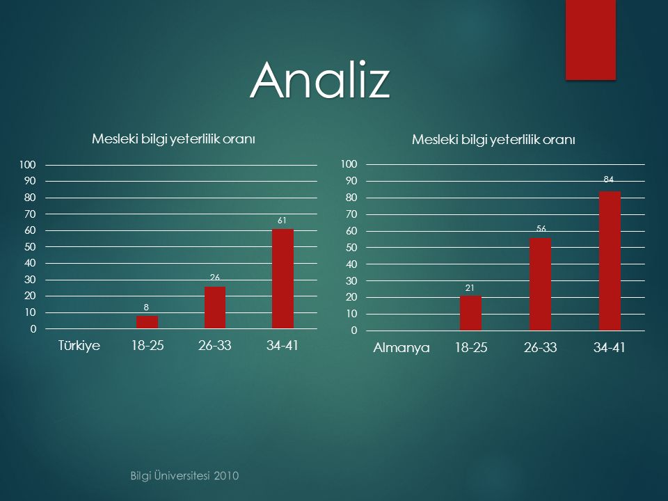 Analiz Bilgi Üniversitesi 2010