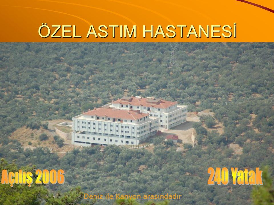 ÖZEL ASTIM HASTANESİ