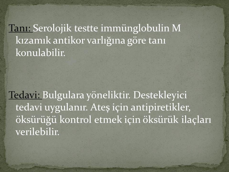 Tanı: Serolojik testte immünglobulin M kızamık antikor varlığına göre tanı konulabilir. Tedavi: Bulgulara yöneliktir. Destekleyici tedavi uygulanır. A