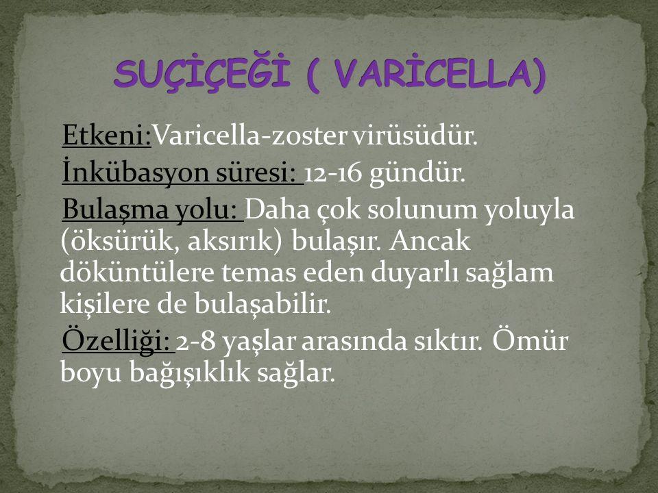 Etkeni:Varicella-zoster virüsüdür. İnkübasyon süresi: 12-16 gündür. Bulaşma yolu: Daha çok solunum yoluyla (öksürük, aksırık) bulaşır. Ancak döküntüle