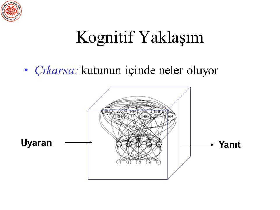 Davranışçılıkla İlgili Problemler İnsan davranışının çeşitliliğiyle baş edemez –Örneğin: dil Bilimi gözlenebilenle sınırlandırmak kötü bir fikir –Elek