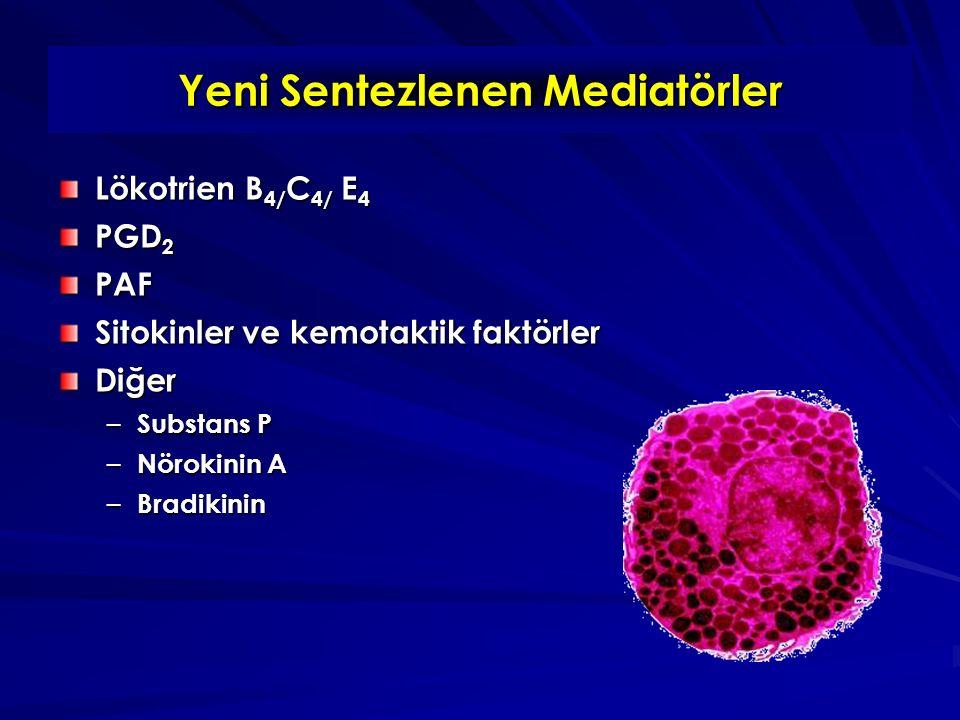 Yeni Sentezlenen Mediatörler Lökotrien B 4/ C 4/ E 4 PGD 2 PAF Sitokinler ve kemotaktik faktörler Diğer – Substans P – Nörokinin A – Bradikinin