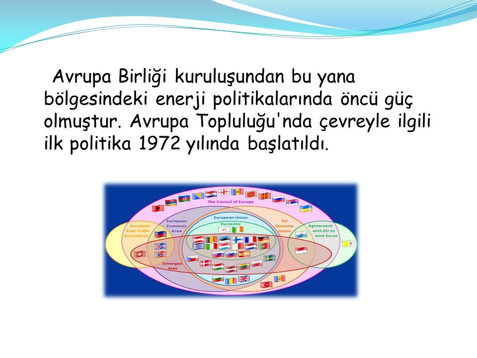 Türkiye bir tarım ve sanayi ülkesi olduğu için Avrupa Birliği ne girdiğinde; Avrupa Birliği'nin gelişim politikalarından olan tarım, enerji ve çevre politikalarından yararlanacaktır.