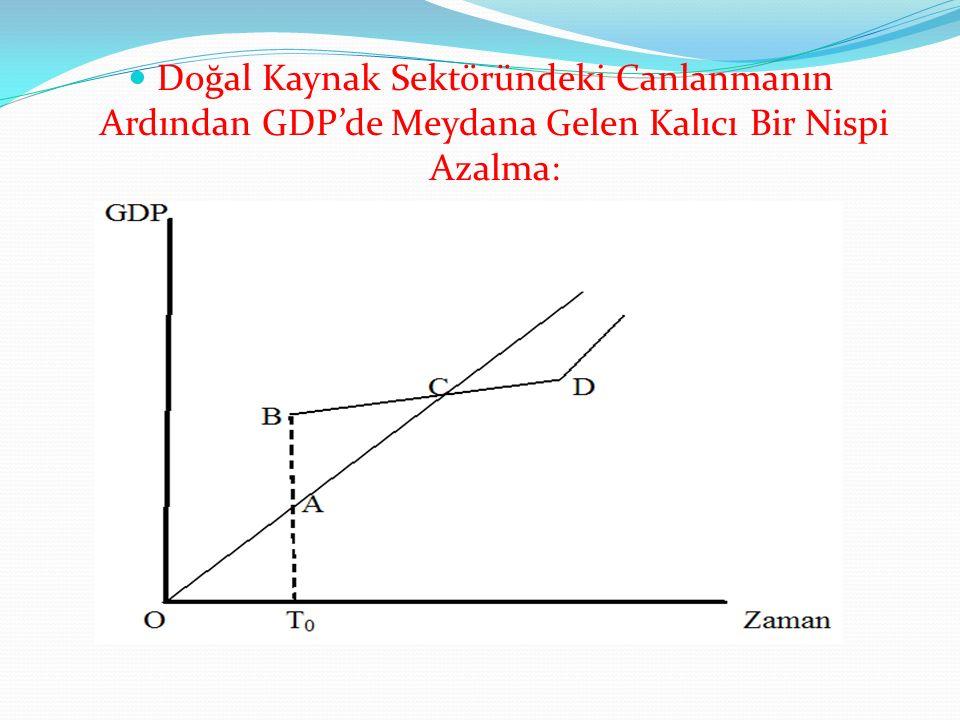 Doğal Kaynak Sektöründeki Canlanmanın Ardından GDP'de Meydana Gelen Kalıcı Bir Nispi Azalma:
